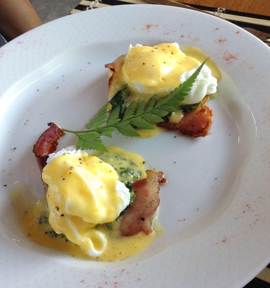eggs benedict | optimising nutrition