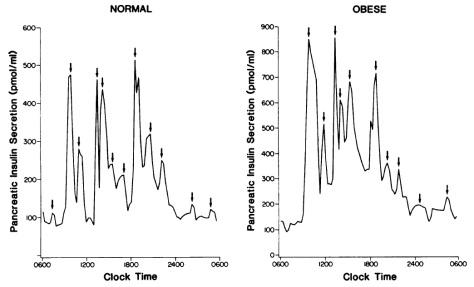 the glucose ketone index optimising nutrition