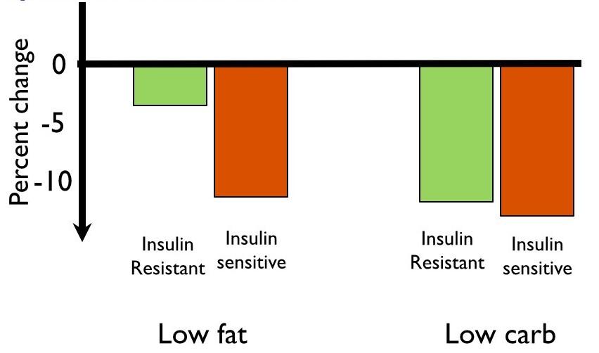 micronutrient chart essay